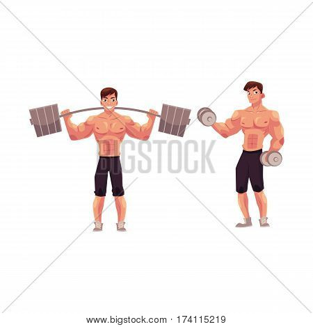 Young man, male bodybuilder, weightlifter working out, training with barbell and dumbbell, cartoon vector illustration isolated on white background. Male bodybuilder with barbell and dumbbells