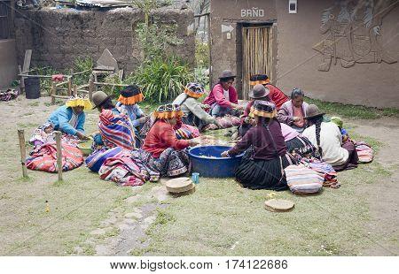 Indigenous women cutting potatoes for a local wedding ceremony Paru Paru the highest-altitude community in La Parque de la Papa Andes Mountains. October 22 2012 - Paru Paru Peru
