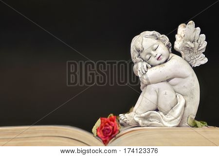 Little angel sleeping on the  old book