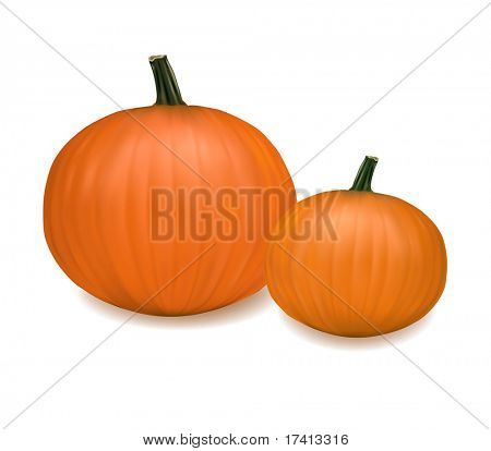 Two fresh pumpkins. Photo-realistic vector.