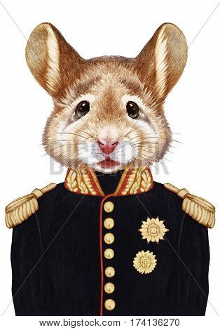 Portrait of Mouse in military uniform. Hand-drawn illustration, digitally colored.