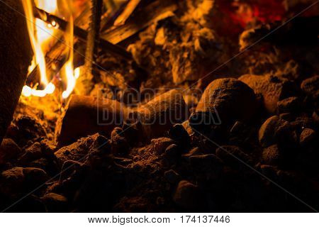 closeup cassava in campfire cooking food in camping