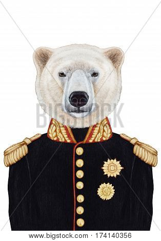 Portrait of  Polar Bear in military uniform. Hand-drawn illustration, digitally colored.