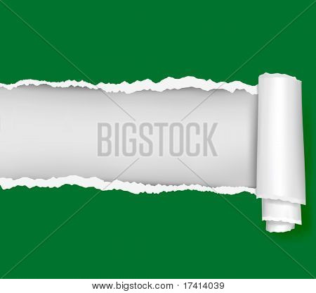 Ripped green paper background. Vector illustration.