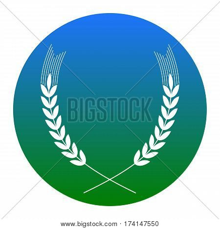 Wheat sign illustration. Spike. Spica. Vector. White icon in bluish circle on white background. Isolated.