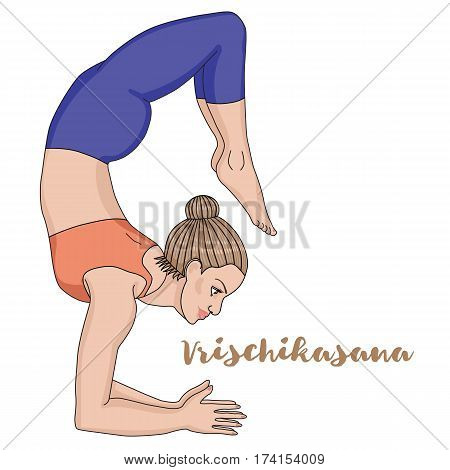 Women silhouette. Scorpion yoga pose. Vrischikasana Vector illustration