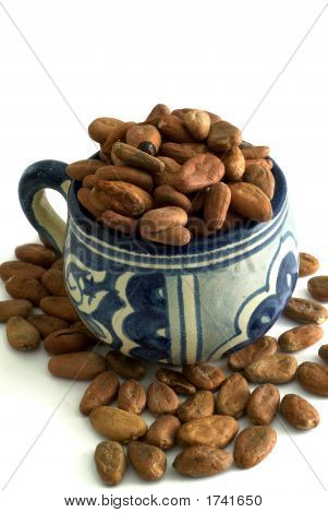 Cacao Cup