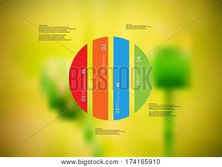 Illustration infographic template with motif of circle vertically divided to four color standalone sections. Blurred photo with natural motif of green poppy plants is used as background.