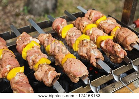 Meat skewers with peppers on a skewer. Cooking outdoors. Tasty meat healthy food.