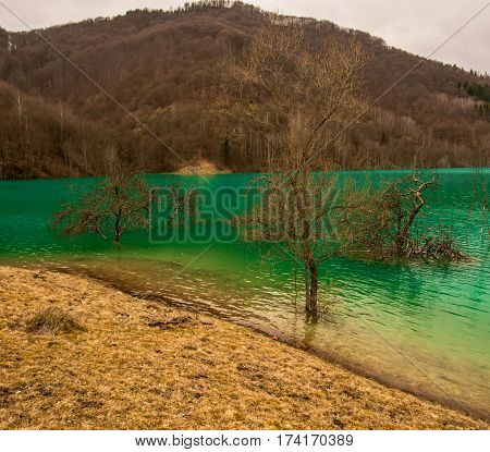 Water lake pollution at Geamana, Romania with cooper residuals