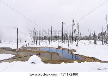 Hot Spring in Yellowstone National Park in Winter