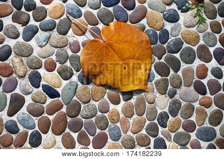 yellow leaf against pebbles; focus on the pebbles