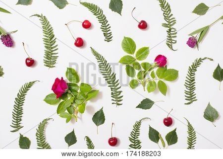 Pattern of green blades of grass with purple flowers leaves birch twigs rose with red flowers green ferns ripe cherries lie on a white background. Pattern on white. Flat lay top view pattern. Flower pattern. Nature plant pattern