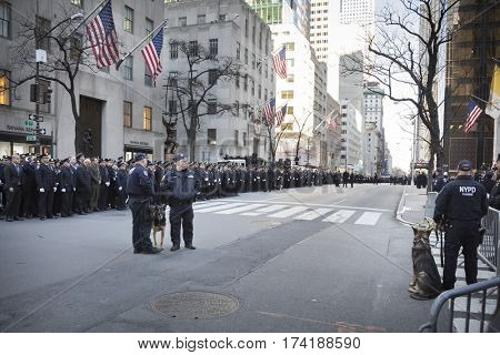 NEW YORK - JAN 13 2017: NYPD Det. Steven McDonald funeral procession and service at St Patricks Cathedral, 5th Avenue, Manhattan - NYPD Canine Unit on duty.