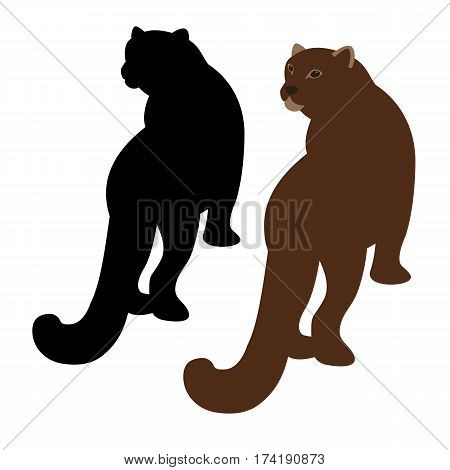 cougar vector illustration style Flat set silhouette black