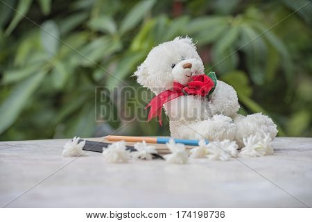 Teddy bear and diary for a memoir .
