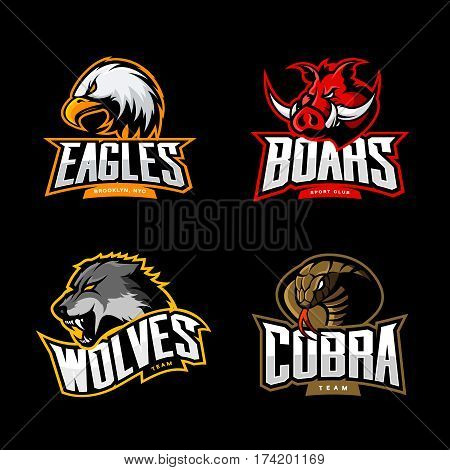 Furious cobra, wolf, eagle and boar sport vector logo concept set isolated on dark background.  Professional team pictogram design. Premium quality wild animal, bird and snake t-shirt tee print illustration