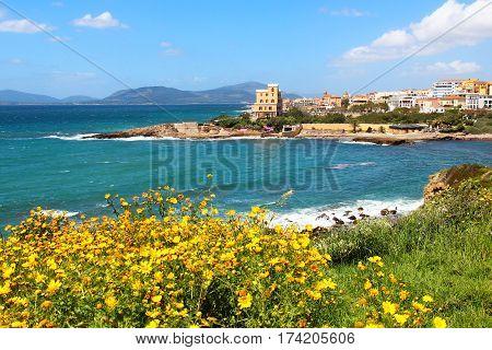 Alghero seacoast in spring, Sardinia island, Italy