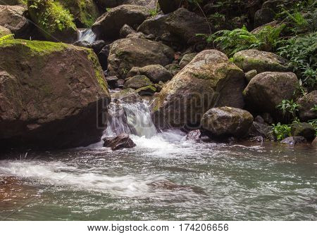 Forest stream among stones. Clean cold water stream in mountains. Fresh stream current between rocks. Rocky landscape with spring. Ecological tourism - hiking photo of fast river between mossy stones