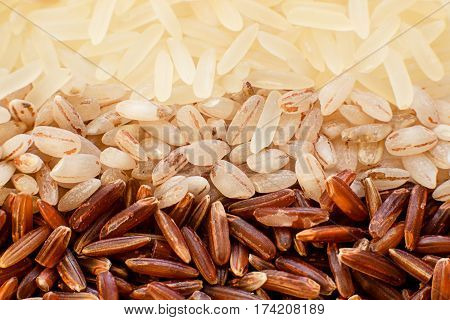 Three types of rice. Macro. view from above Healthy food