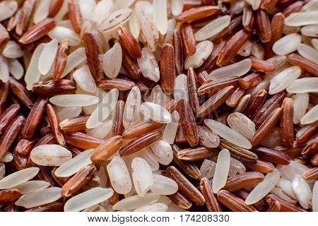 Thai Red Jasmine rice. Rice berry. mixed rice varieties