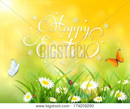 Easter theme with a butterfly flying above the grass and flowers, yellow nature background with sun beams and lettering Happy Easter, illustration.