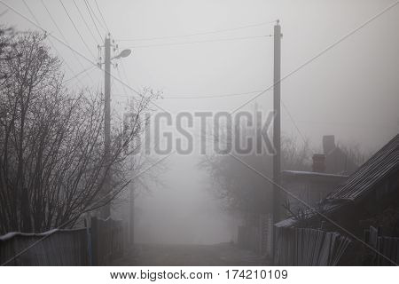 Fog on the street. Smog in the city. Hoarfrost on trave.Holodnaya wet weather