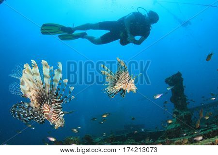 Scuba diver and lionfish fish