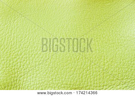 Texture of genuine leather close-up, fashion green color. For natural, artisan backgrounds, backdrop, substrate composition use. With place for your text