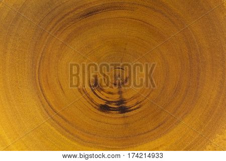 Closeup wood texture of rustic wooden board showing annual ring circles from real tree.