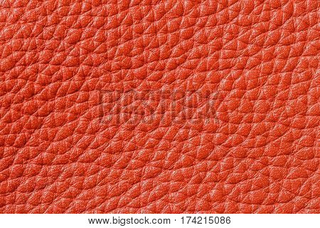Texture of genuine leather close-up, cowhide, orange. For natural, artisan backgrounds, backdrop, substrate composition use, vintage design