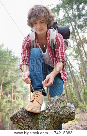Full length of male backpacker tying shoelace in forest