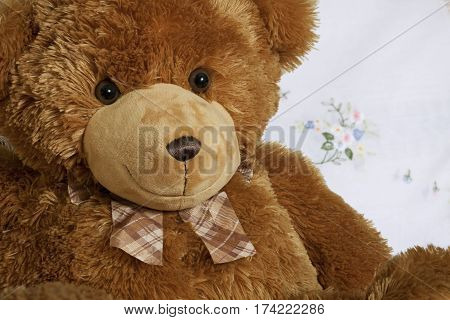 portrait cute teddy bear brown teddy-bear friend smile toy