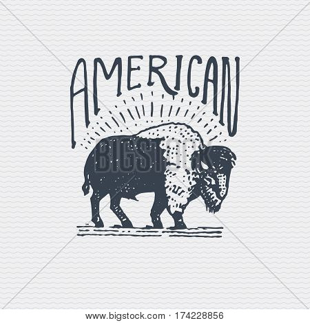 vintage old logo or badge, label engraved and old hand drawn style with wild american buffalo bull.