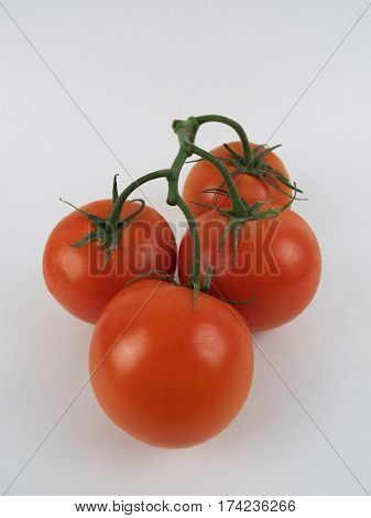 Four fresh vine ripened tomatoes with white background.