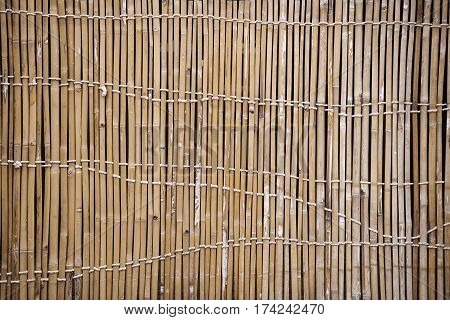 Detail of a Old Bamboo Fence for Background,