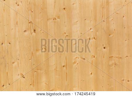 texture of pine wood panel