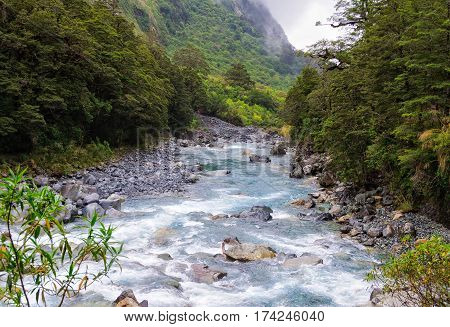 Fast flowing creek in the Fiordland National Park on the South Island of New Zealand