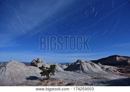 Star Trails Over White Pocket, Paria Canyon-vermilion Cliffs