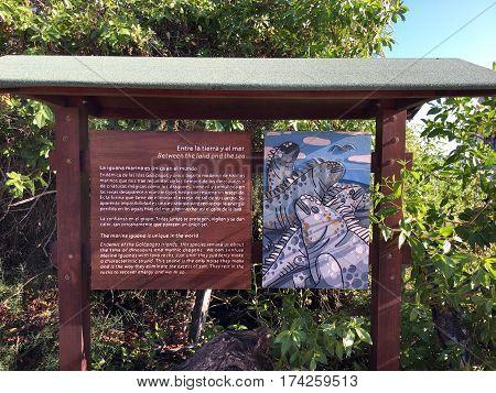 Iguana Sign