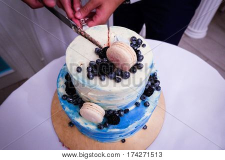 Two- tier blue cream wedding cake decorated with blueberries and macarons. Happy newlyweds cutting the wedding cake