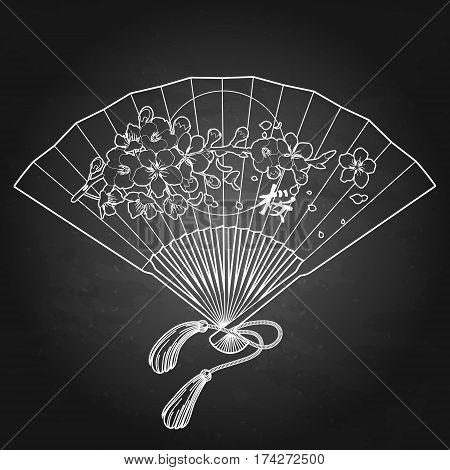 Hand fan with traditional japanese sakura design. Translation of the hieroglyph - sakura. Vector illustration isolated on the chalkboard