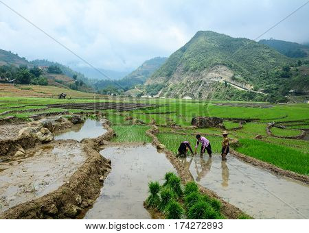 Landscape Of Countryside In Northern Vietnam
