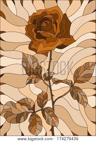 Illustration in stained glass style flower of rose Sepia brown scale