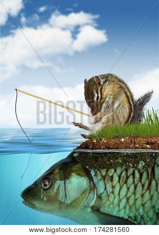 unpredictable result concept chipmunk fishing on fish