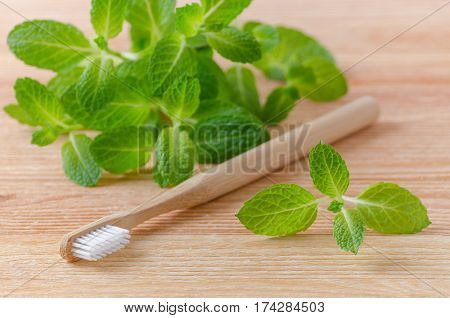 alternative natural wood toothbrush and mint on wooden