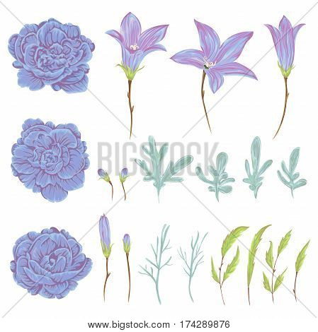 Bluebell, geranium flowers, sagebrush leaves and buds set. Rustic floral design elements for wedding invitations and birthday cards. Vintage vector illustration in watercolor style.