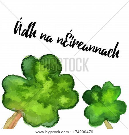 St. Patrick Day greeting card banner flyer poster. Vector illustration. Watercolor template with four leaf clover clover and modern calligraphy lettering. Luck of the Irish written in Irish Gaelic