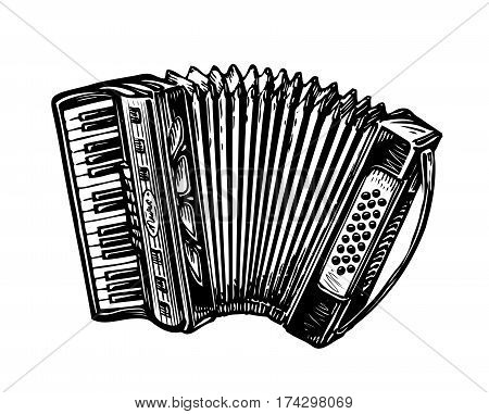 Hand-drawn accordion, bayan. Music instrument, chanson, melody symbol Sketch vector