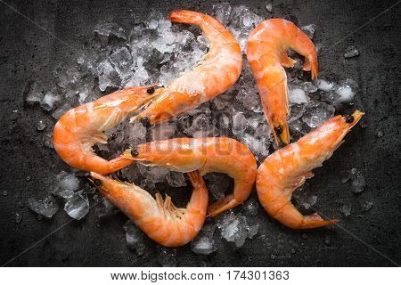 Fresh Prawns Shrimps in ice on black background. Top view Food background.